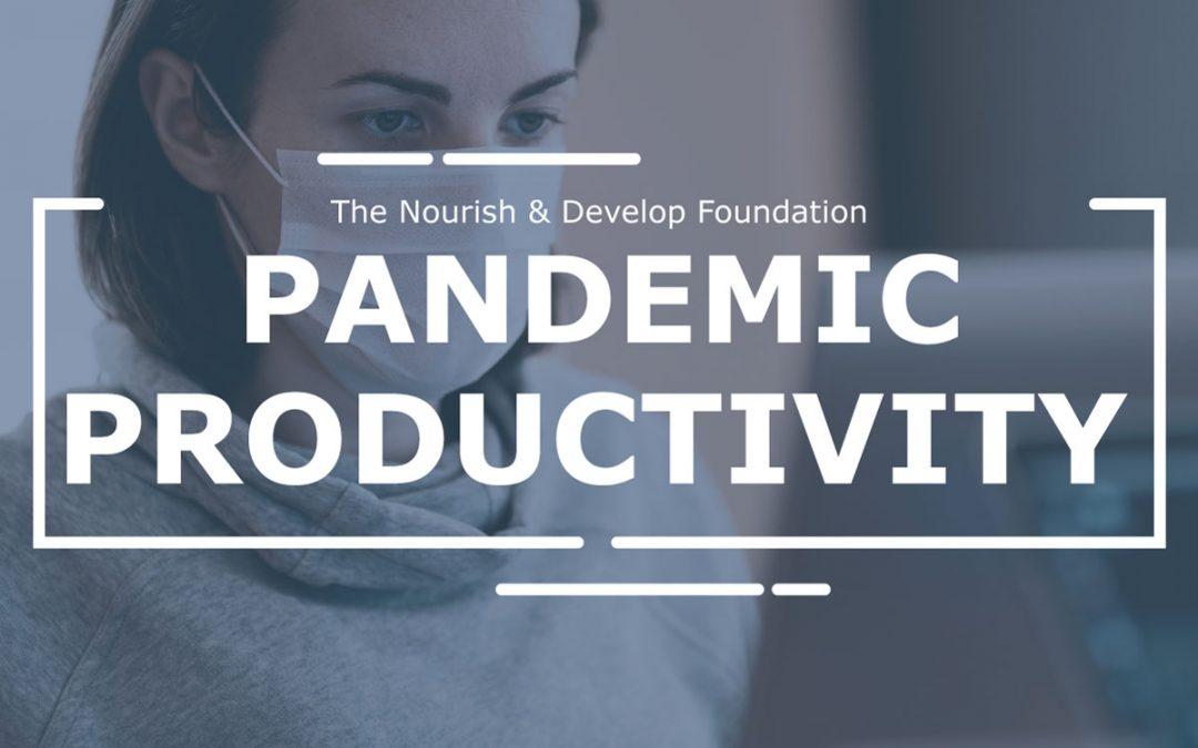 Pandemic Productivity