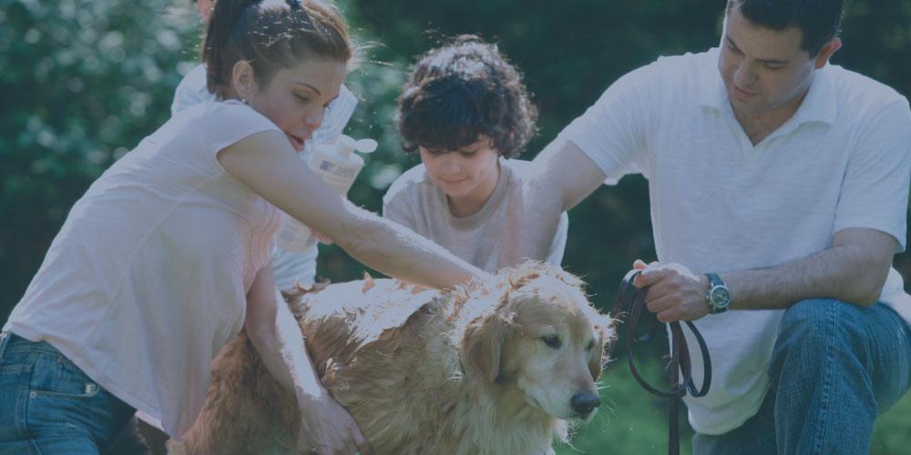 family washing dog